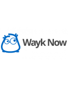 wayk-now-logo.png